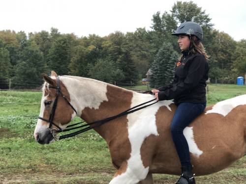 Manton equestrians qualify for states