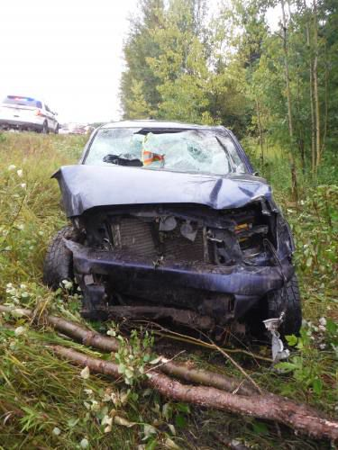 Reed City man found dead after a rollover in Cheboygan
