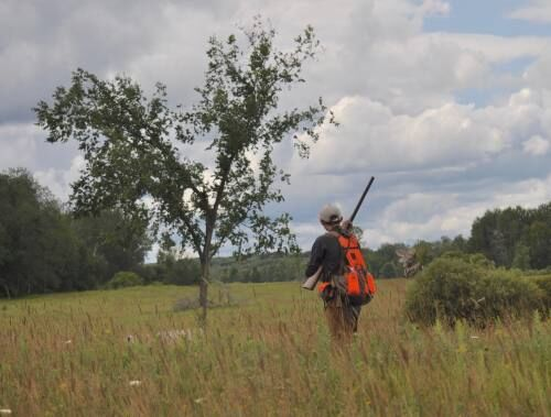Marion pheasant hunting reserve grateful for extended season following COVID shutdown