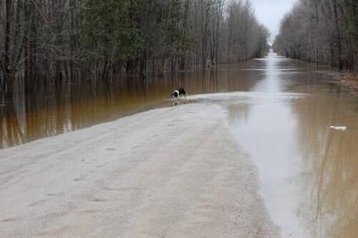 Flooding not a huge concern this week due to previous snow melt, ground thaw