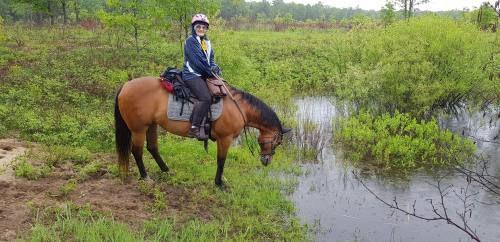 92-year-old woman crosses Michigan on horseback