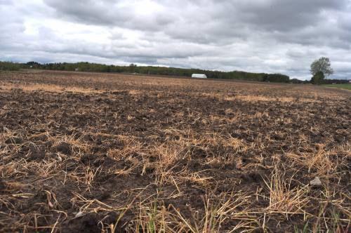 Michigan farming economy looks 'pretty bleak'