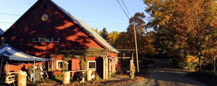 Micro Brews Bubbling Up In NEK, North Country