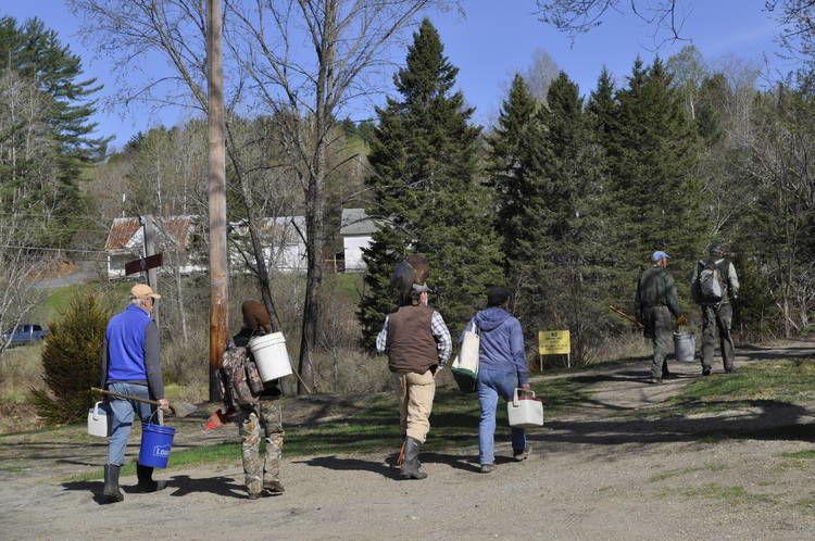 Hundreds Of Trees Planted Along East Burke Riverbank