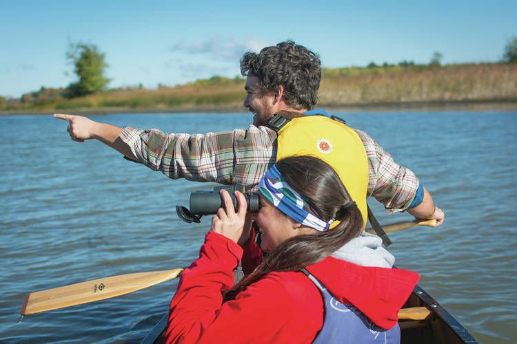 Vermont's Best Birding Hotspots