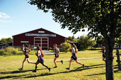 Area H.S. cross country running previews