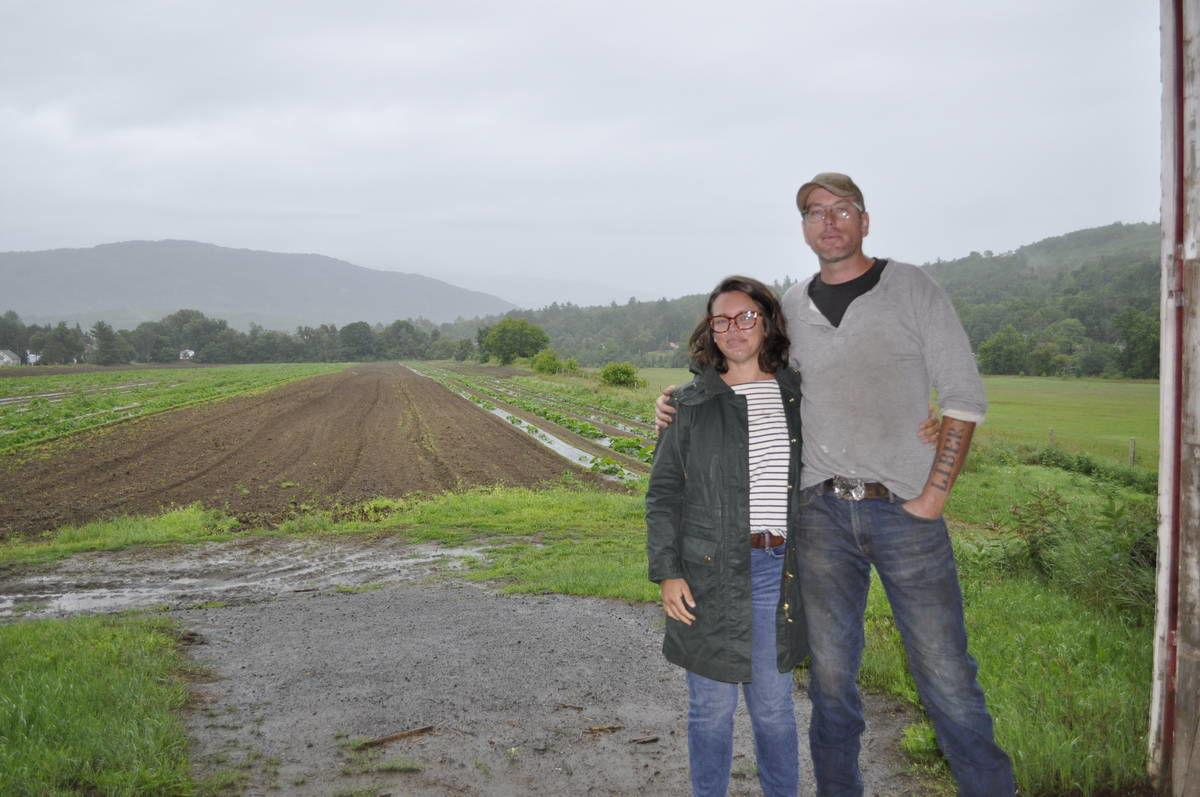 Guildhall Potato Farm Sprouts Back To Life