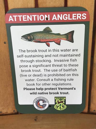 Signs Barring Baitfish Coming To NEK Ponds To Protect Native Trout