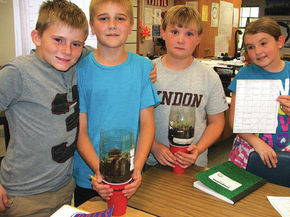 LTS science students learn how to put together terrariums