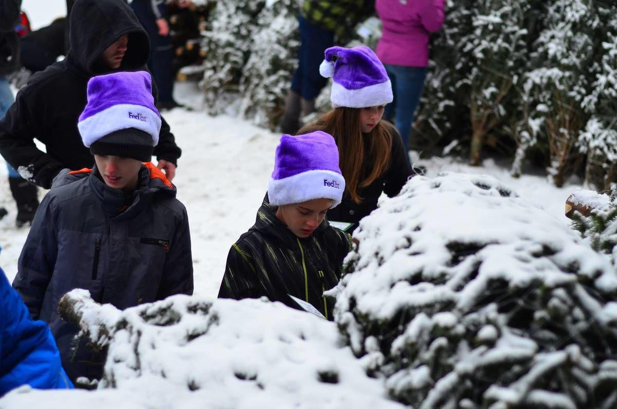 Bethlehem Students, Community Turn Out For Trees For Troops