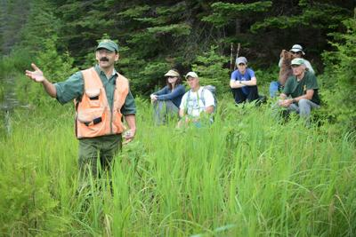Take A Guided Hike In September On Vermont's Wildlife Management Areas