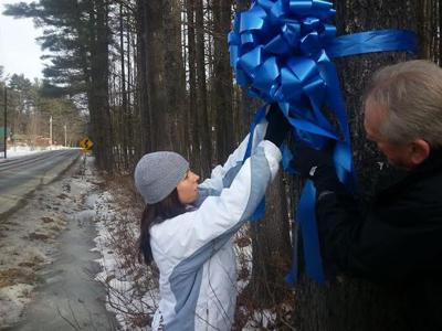 The Blue Ribbon Tree along Route 112 in Haverhill