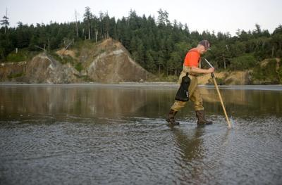 Portions of coast open for clamming