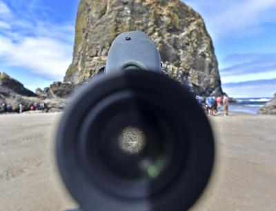 Trespassing and other disturbances down at Haystack Rock