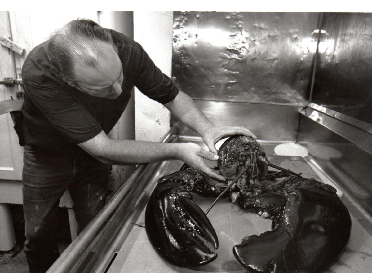 Remembering Victor the lobster