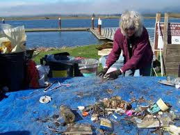 Acting locally to curb a new world order in ocean pollution