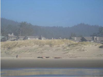 Homeowners say they have the right to grade dunes