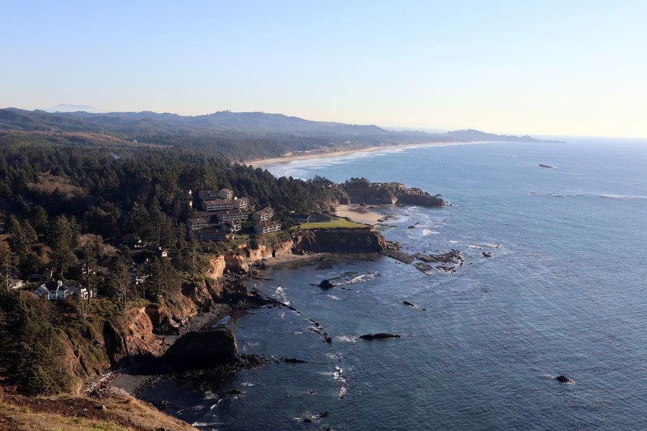 Plan floated to return sea otters to the Oregon Coast