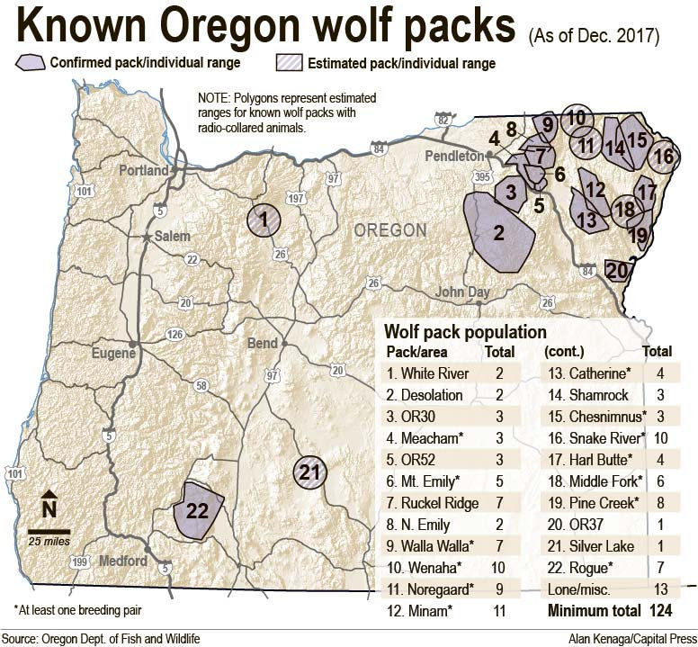 Oregon wolf population continues to grow
