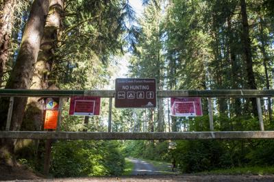 Fire danger closes Ecola Creek reserve
