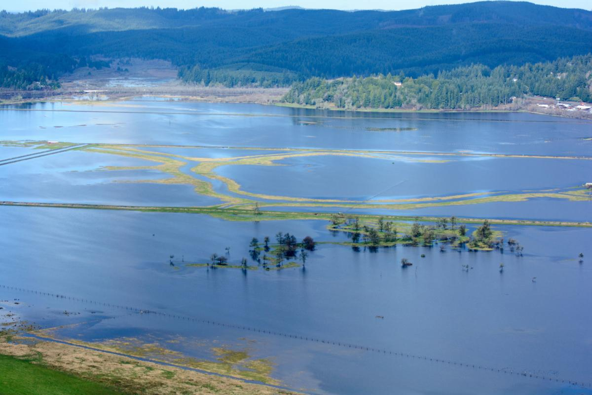 King_tide_floods_Coquille_River_valley_Alex_Derr.jpg