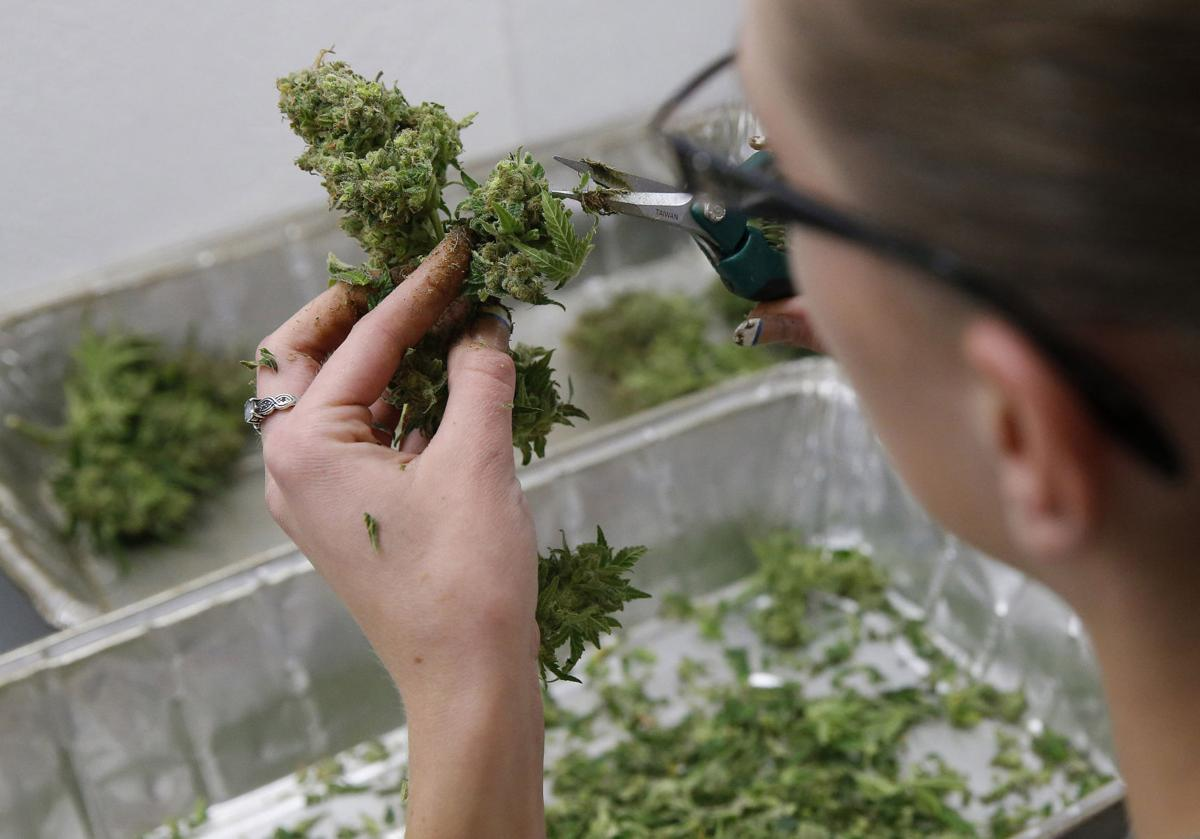 Cannon Beach awaits first marijuana application