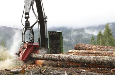 Environmental, fishing groups sue Oregon over coho salmon