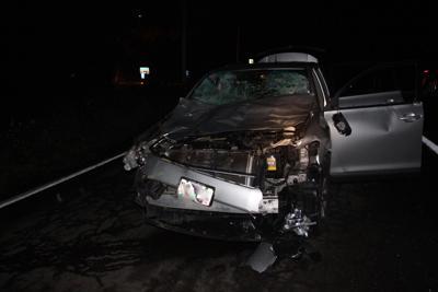 Driver, passenger unhurt in crash with elk