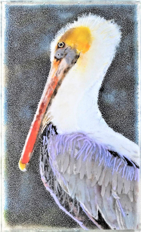 bird_smallaa.jpg