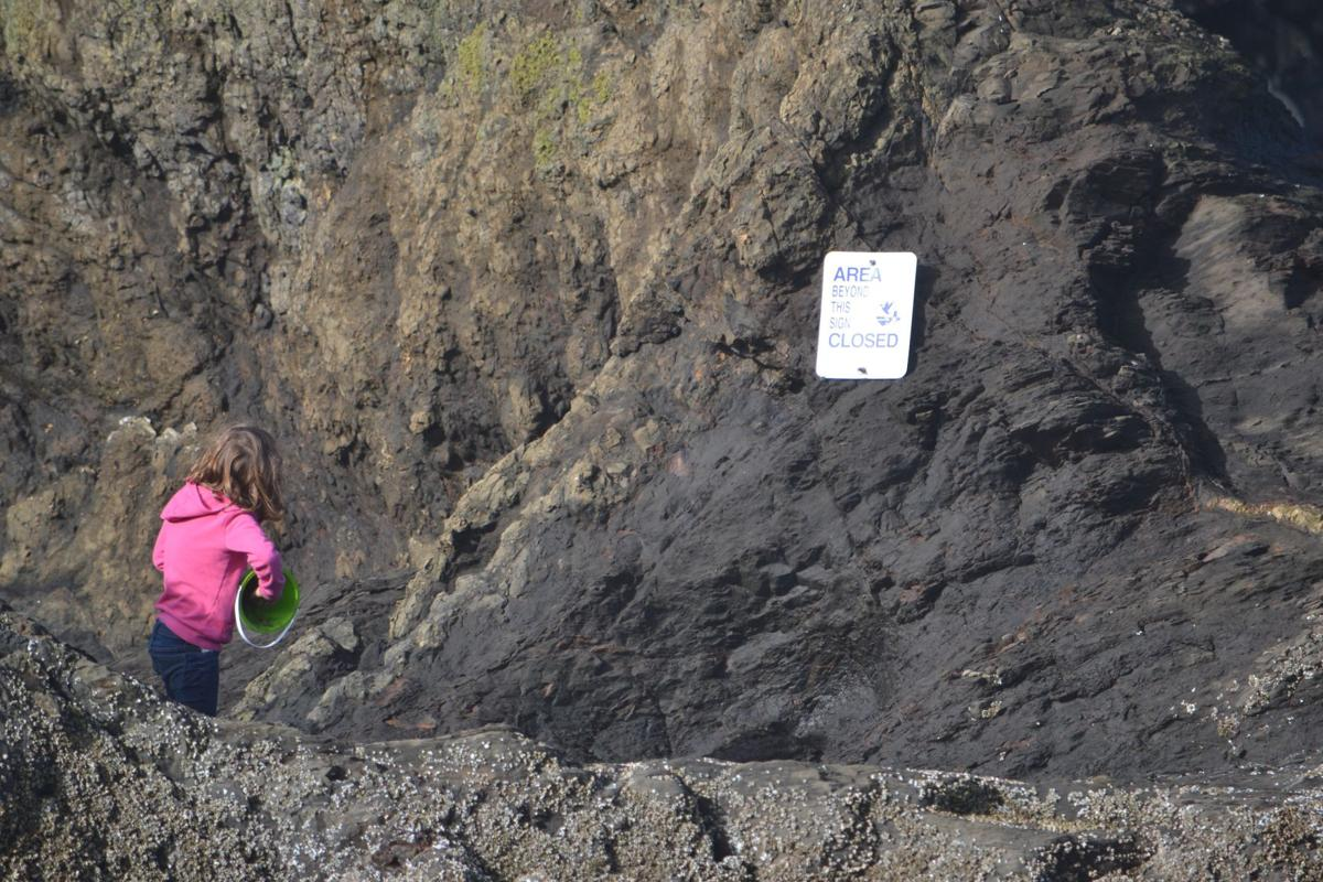 Girl plays near Haystack Rock