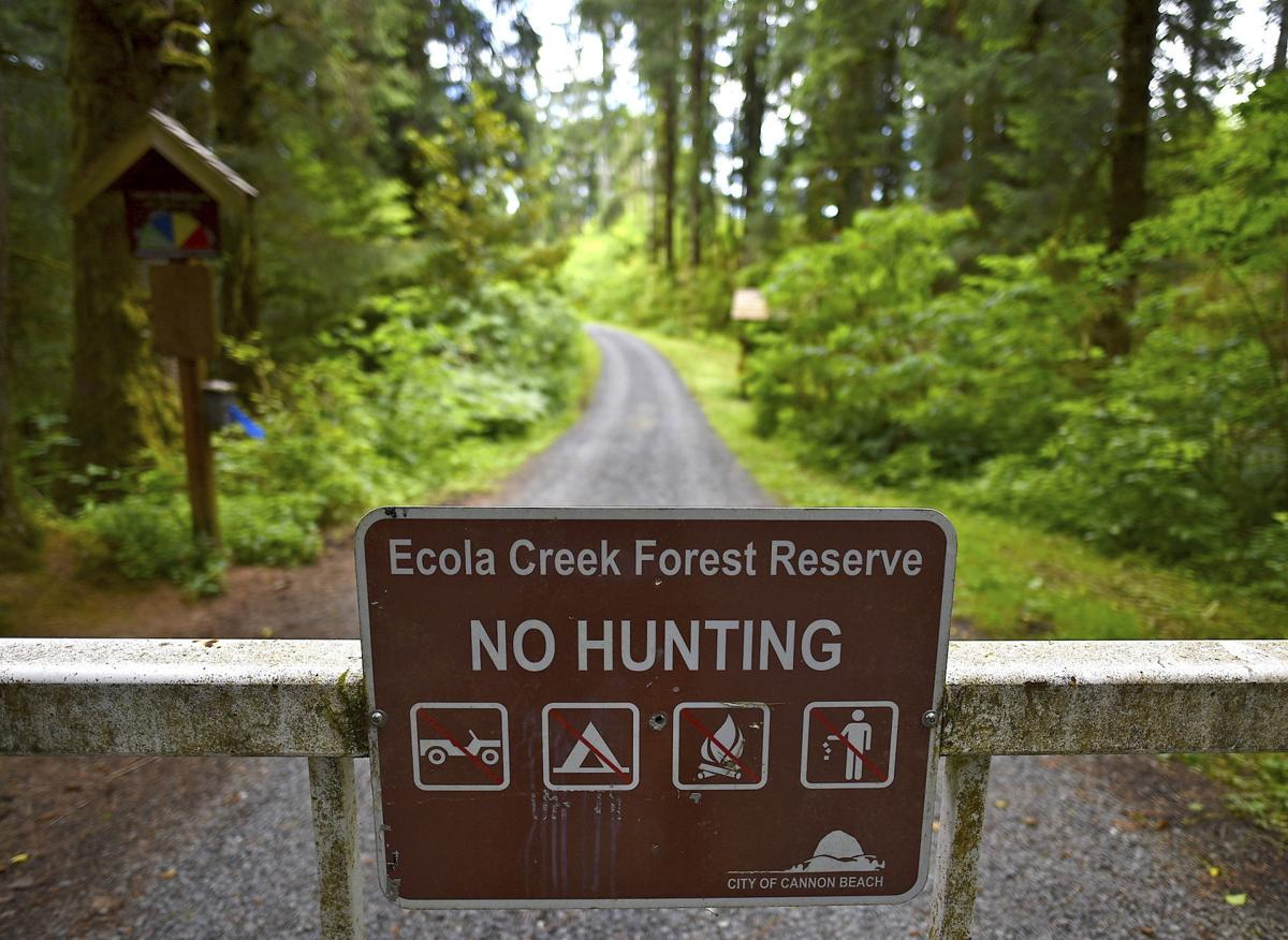 Cannon Beach reviews thinning in Ecola Creek Reserve
