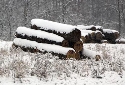 102220.N.CF.Snowpictures3.jpg