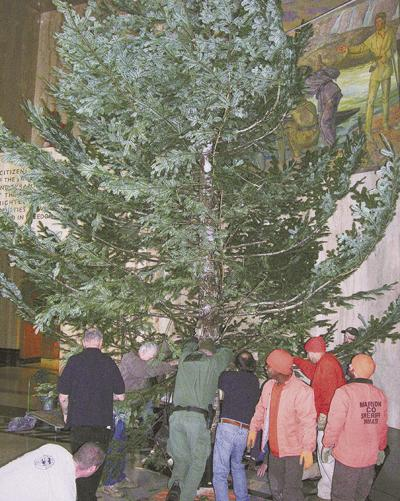 State supplies Christmas tree