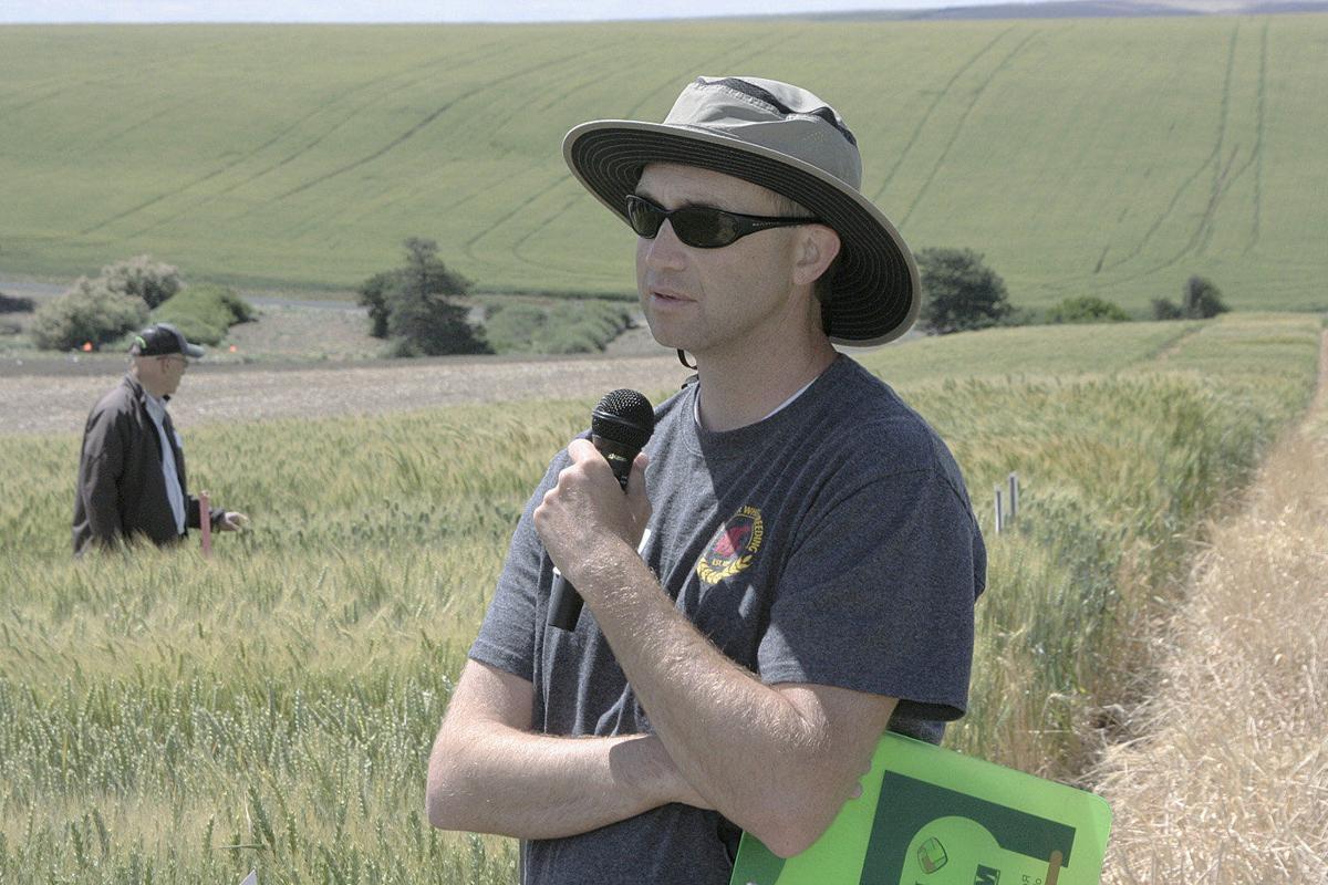 Genome map will help breeders develop better wheat varieties