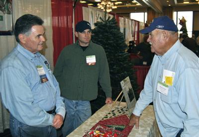 Christmas tree farmers see upturn