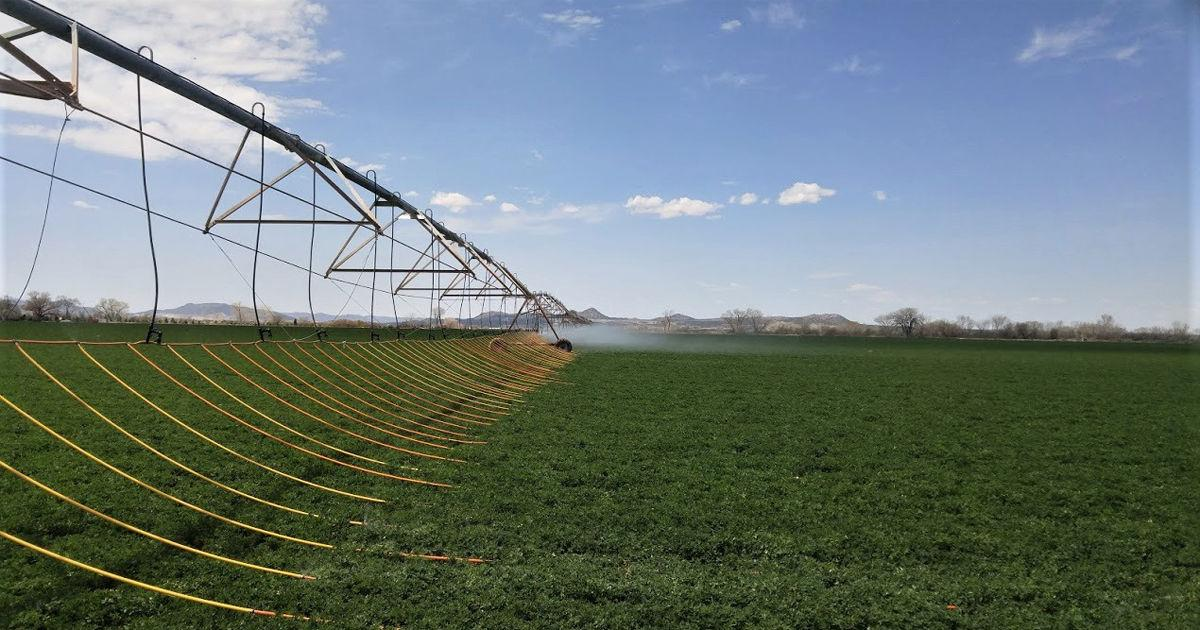 Water management grows farm profits | Sponsored - Capital Press