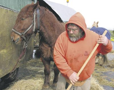 Horse logger explores countryside, cities