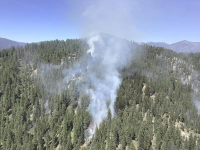 Prescribed fire clears under story, fine fuels