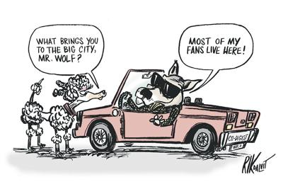 Wolf advocates must open eyes
