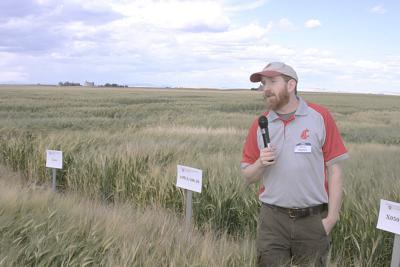 WSU researcher Kevin Murphy