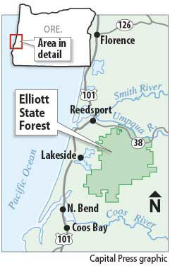 Elliott Forest map