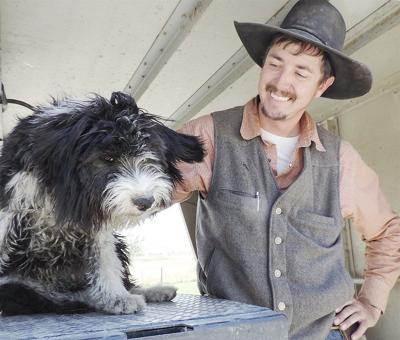 Idaho shags' stamina, livestock handling spur surge in