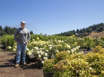 Oregon farmer Jim McKay with his nursery crops