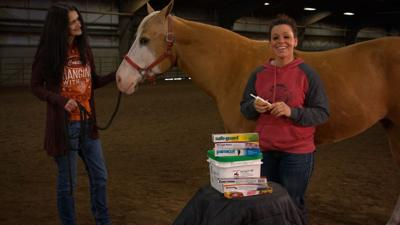 The how and when of horse worming