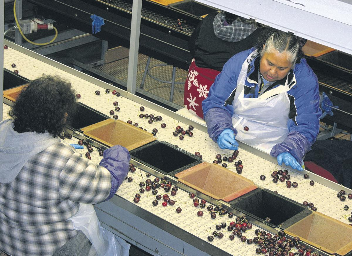 Food safety costs pile up