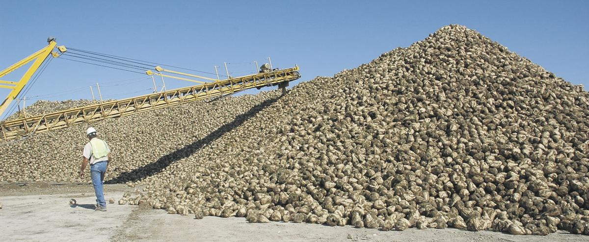 Growers pin hopes on winning legal battle