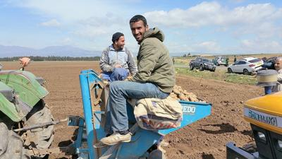 Idaho seed potato growers see opportunity in Algeria