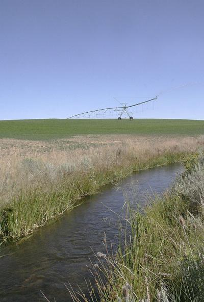 Irrigation 11
