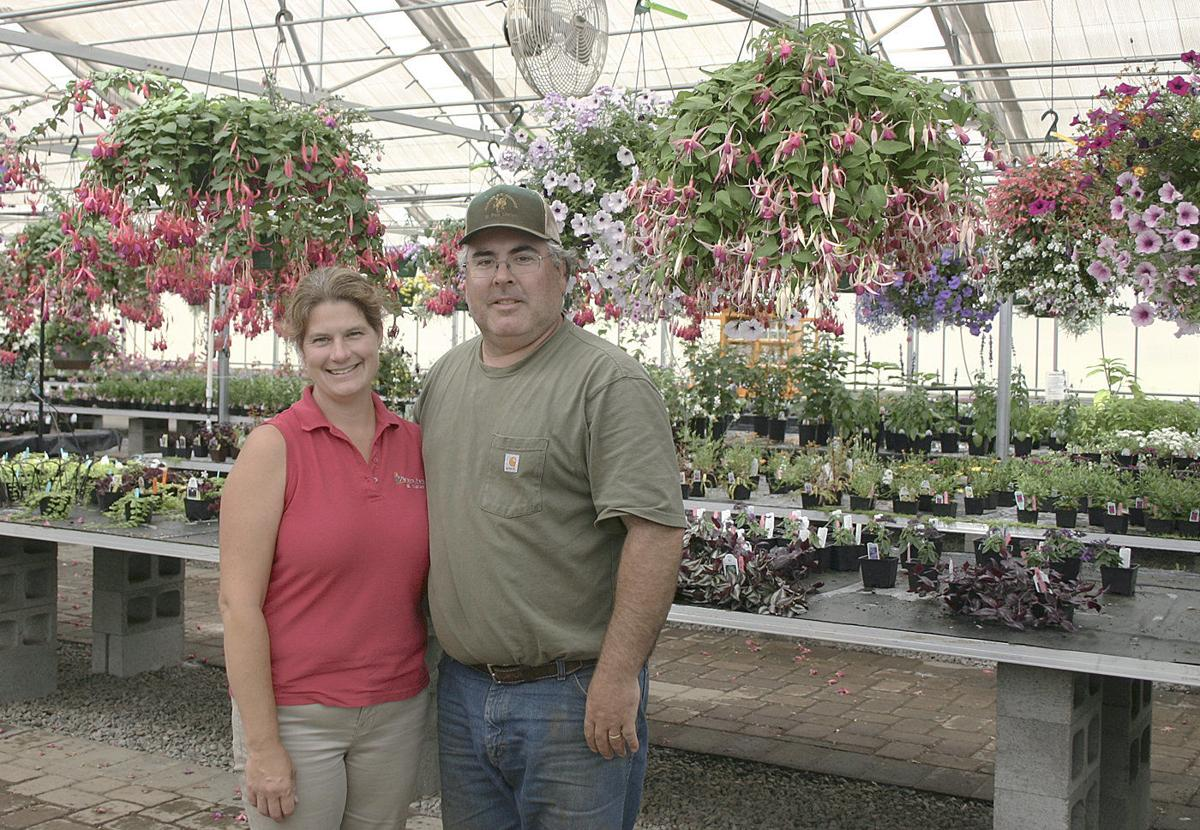 Nursery blossoms and farm diversifies