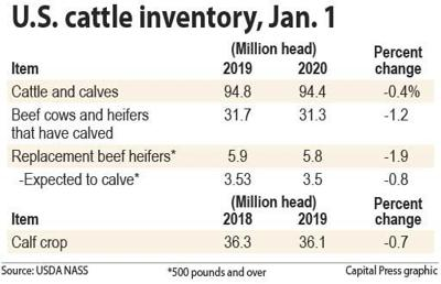Cattle inventory, Jan. 1